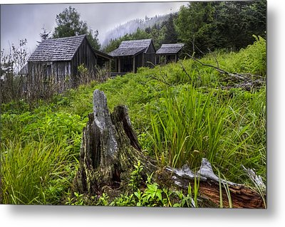 Mountain Mists At Le Conte Metal Print by Debra and Dave Vanderlaan