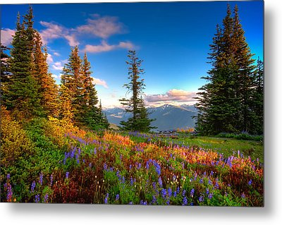 Mountain Rainier  Sunset Metal Print by Emmanuel Panagiotakis