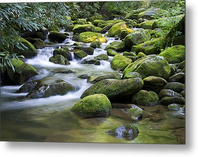 Mountain Stream 1 Metal Print