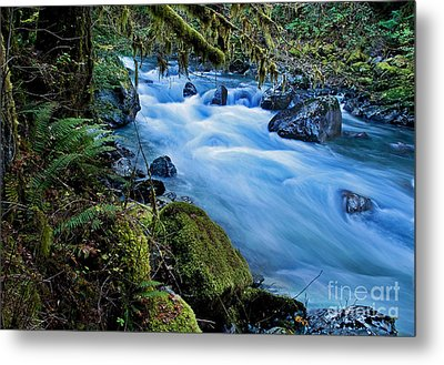 Metal Print featuring the photograph Mountain Stream In Forest - Nooksack River Washington by Valerie Garner