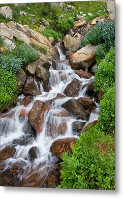 Metal Print featuring the photograph Mountain Stream by Ronda Kimbrow