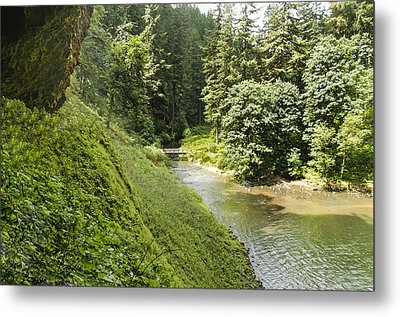 Mountain Stream Metal Print