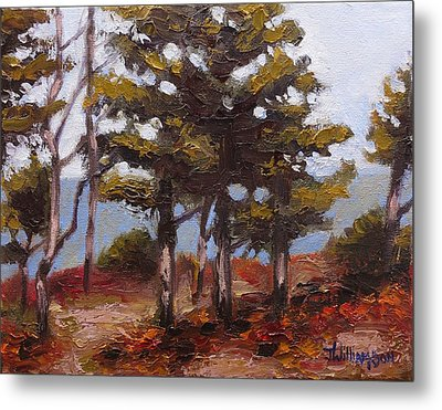 Mountain Top Pines Metal Print