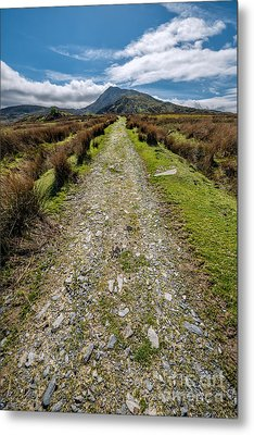 Mountain Track Metal Print by Adrian Evans