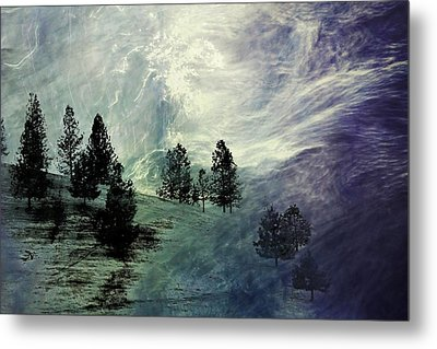 Metal Print featuring the photograph Mountain View by Athala Carole Bruckner