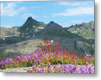 Mountains And Wildflowers Metal Print