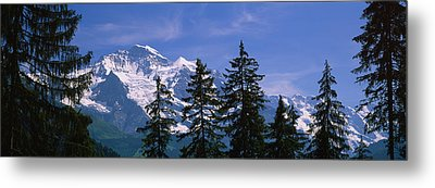 Mountains Covered With Snow, Swiss Metal Print