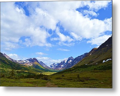 Mountains In Anchorage Alaska Metal Print by Dacia Doroff