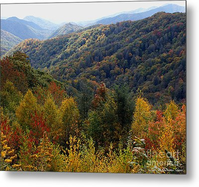 Mountains Leaves Metal Print