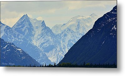 Mountains Near Matanuska Glacier Metal Print