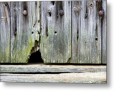 Mouse Hole Metal Print by Olivier Le Queinec