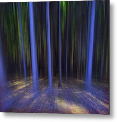 Moving Forest Metal Print by Florin Birjoveanu