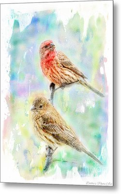 Mr And Mrs House Finch - Digital Paint Metal Print by Debbie Portwood