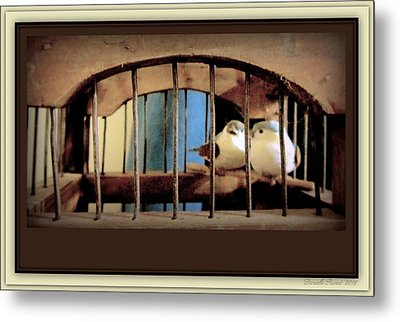 Mr. And Mrs Tweety In Sepia  Metal Print by Danielle  Parent