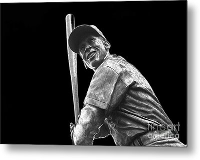 Mr. Cub Metal Print by David Bearden
