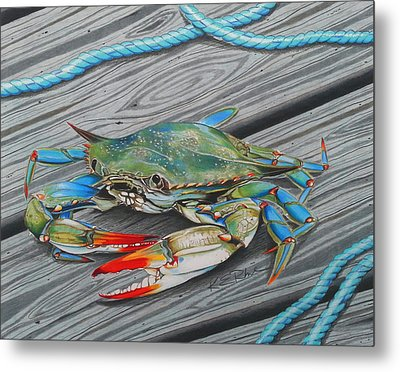 Mr. Jimmy Metal Print by Karen Rhodes