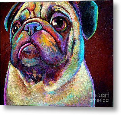 Metal Print featuring the painting Mr. Pugnacious  by Robert Phelps