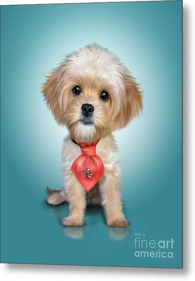 Mr. Toby Waffles The Cavapoo Metal Print by Catia Cho