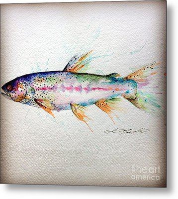 Mr Trout Metal Print by Chris Mackie