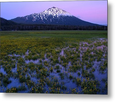 Metal Print featuring the photograph Mt. Bachelor Twilight by Kevin Desrosiers