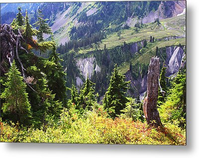 Mt. Baker Washington Metal Print