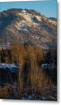 Mt Baldy Near Grants Pass Metal Print