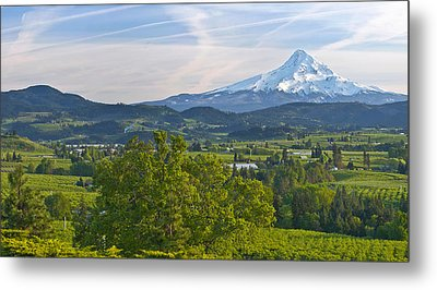 Mt Hood And Hood River Valley Metal Print by Panoramic Images