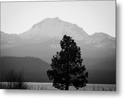 Metal Print featuring the photograph Mt. Lassen With Tree by Jan Davies