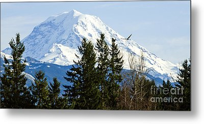 Mt. Rainier And A Bald Eagle  Metal Print by MaryJane Armstrong