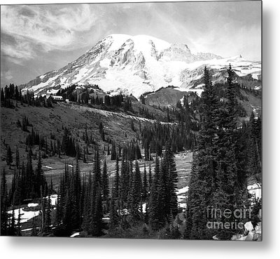 Metal Print featuring the photograph Mt. Rainier And Paradise Lodge 1950 by Merle Junk