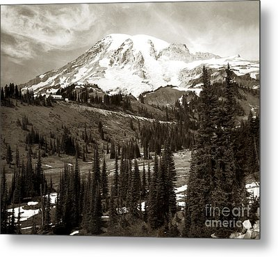 Mt. Rainier And Paradise Lodge In Sepia 1950 Metal Print by Merle Junk
