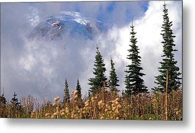 Mt Rainier Cloud Meadow Metal Print