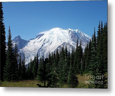 Mt. Rainier In August Metal Print by Chalet Roome-Rigdon