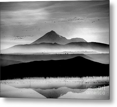 Metal Print featuring the photograph Mt. Shasta by Irina Hays