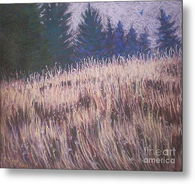 Metal Print featuring the painting Mt. Tabor Contrasts by Suzanne McKay