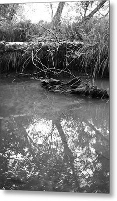 Metal Print featuring the photograph Muddy Creek by Adria Trail