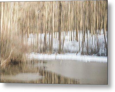 Multiple-exposure Of Trees In Winter Metal Print by Rona Schwarz