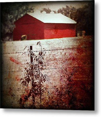 Murder In The Red Barn Metal Print by Trish Mistric
