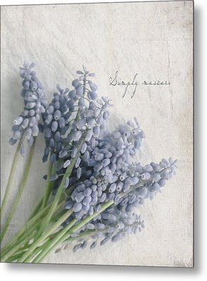 Muscari Metal Print by Beverly Cazzell