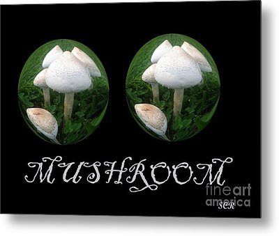 Metal Print featuring the photograph Mushroom Art Collection 3 By Saribelle Rodriguez by Saribelle Rodriguez