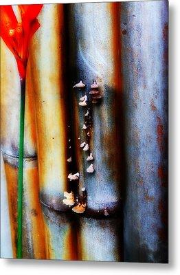 Mushroom On Bamboo 2 Metal Print