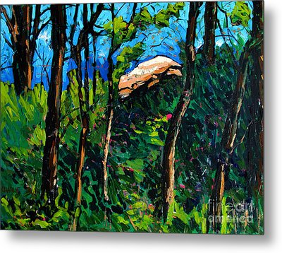 Mushrooming At Treaty Rock Metal Print by Charlie Spear