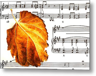 Music In Autumn Metal Print by Marwan Khoury