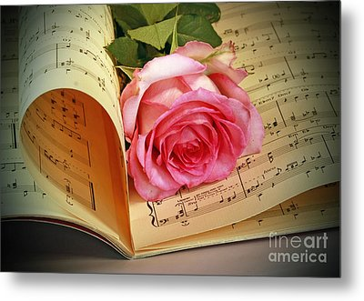 Musical Rose Metal Print by Inspired Nature Photography Fine Art Photography