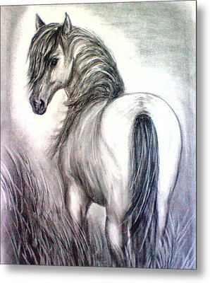 Metal Print featuring the drawing Mustang by J L Zarek
