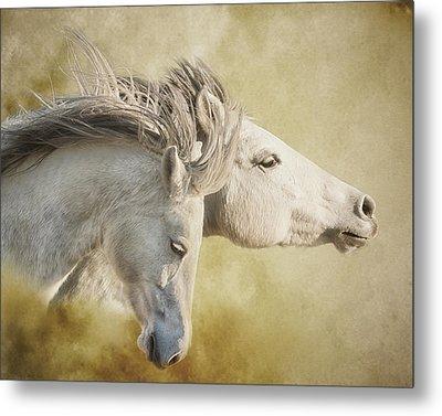 Mustang Run Metal Print by Ron  McGinnis