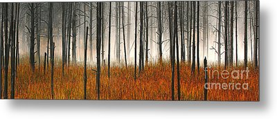 Metal Print featuring the photograph Mute Dog Forest Pano by Clare VanderVeen