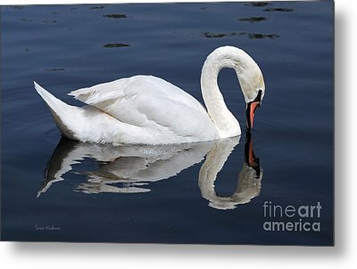 Metal Print featuring the photograph Mute Swan Kissing Its Reflection by Susan Wiedmann