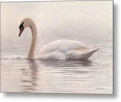 Mute Swan Painting Metal Print by Rachel Stribbling