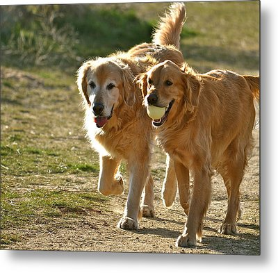My Bff Metal Print by Barbara Dudley